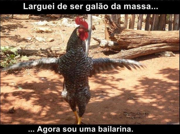 galao